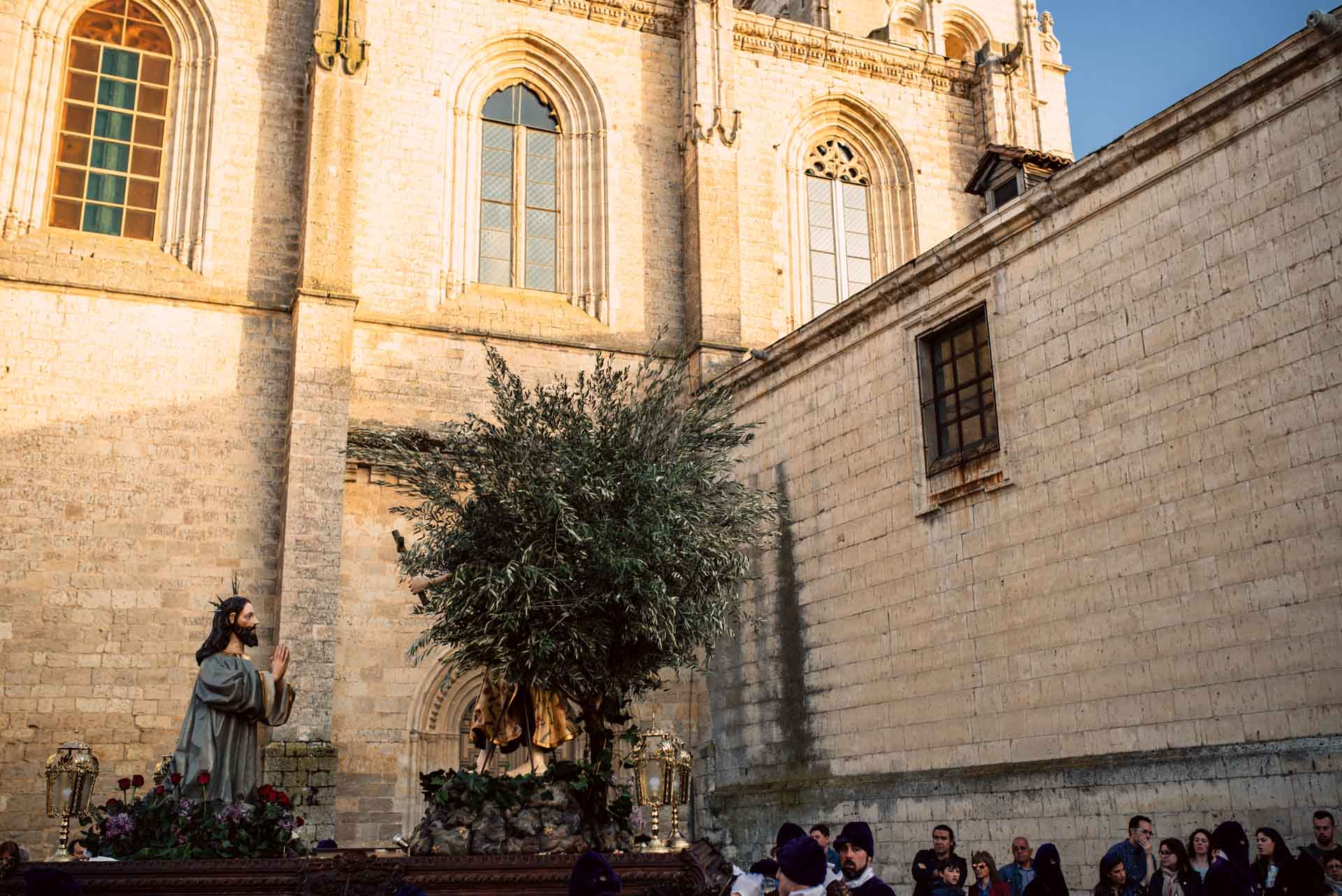 Fotógrafo sentimental. Semana Santa Medina de Rioseco 2017